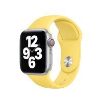 Apple Sportarmband Ingwer